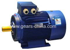 Three phase motor induction motor small powerful TYBZ synchronous motor