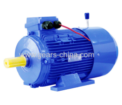 Factory price motor TYBZ synchronous powerful 800 watts motor