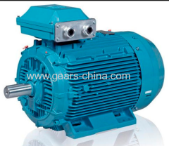 china manufacturer TYBZ synchronous motors