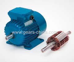 90TYD-S60S Permanent Magnetism Low-speed Synchronous AC Motor