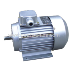 0.55kW 1.55Amp YVF2-80M1-4 ac permanent magnet TYGZ synchronous motor with IP54