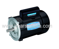 NEMA single hase-high torque motors manufacturer in china