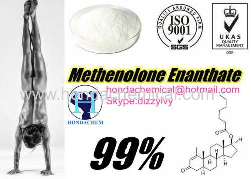 Muscle Building Steroid Primobolan Steroid Hormoen Powder Methenolone Enanthate Primobolan Depot
