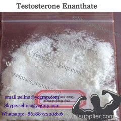 Muscle Mass Raw Steroid Powders Test E Testosterone Enanthate