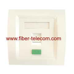 Plastic Data Outlet Plate