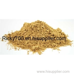 Astragalus Extract Astragaloside 0.3%-30%