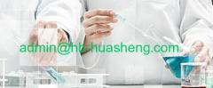 CHINA HUASHENG INTERNATIONAL LIMITED