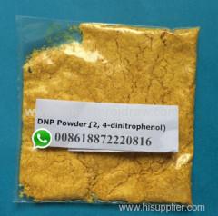 Buy DNP Powder Fat Burning 2 4 Dinitrophenol DNP for Weight Loss