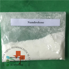 High Purity Steroid Powder Nandrolone White Crystalline Powder for Osteoporosis