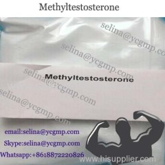 Muscle Building Anabolic Steroid Powder Methyltestosterone