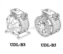 UDL SERIES PLANETARY STEPLESS SPEED VARIATOR