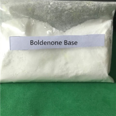 Offer High Purity Steroid Hormone Powder Boldenone Base