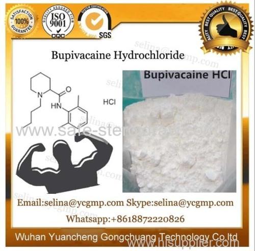USP Standard Pharmaceutical Powder Bupivacaine Hydrochloride