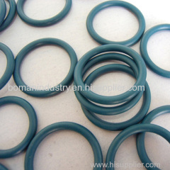 FPM O Ring in 3.4*1.9 Size