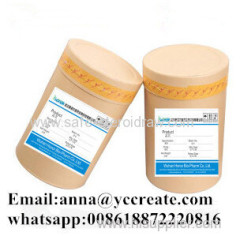 Supply Dmae L-Bitartrate CAS No: 5988-51-2 for Alzheimer Disease