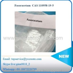 Fasoracetam Effective Cognitive Enhancer CAS 110958-19-5 Fasoracetam