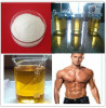 Testosterone Raw Steroid Testosterone Enanthate legal powder for Cutting fat loss