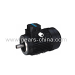 Y2 Series Winding Three Phase Ac Motor/ Gearmotors