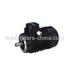 Y2 Series Winding Three Phase Ac Motor/ Gearmotors