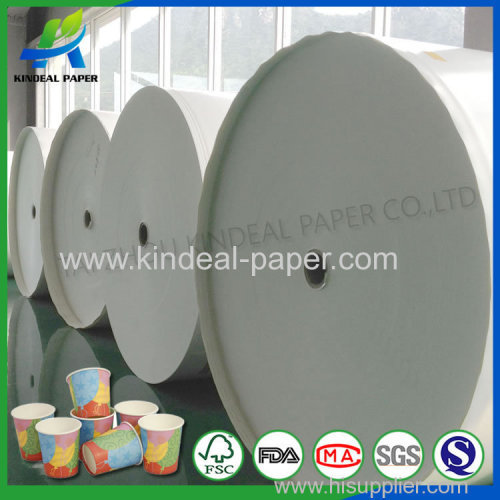 Pe coated paper for cup