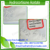 Glucocorticoid Powder Hydrocortisone Acetate For Treatment of Immume System Disorder 50-03-3