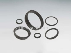 SiC mechanical seal rings and bearings