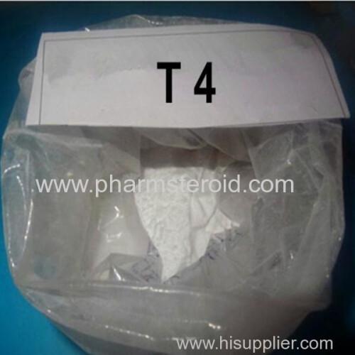 Weigth Loss Raws Effective Bulking Cycle Steroids L-Thyroxine (T4) Powder