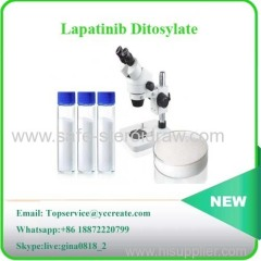 99.5% Purity Lapatinib Ditosylate Tykerb|Lapatinib Int