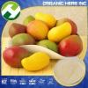 Mango Fruit Powder Mangiferin Price