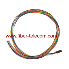 12cores Ribbon Fan-out Fiber Optic Pigtail