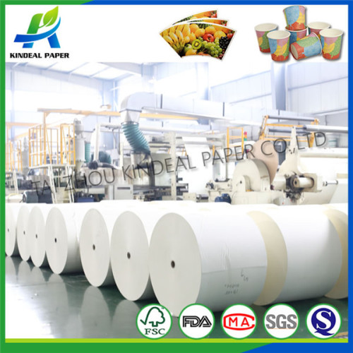 Printed pe coated paper for juice paper cup