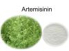 Artemisinin plant extract customerised