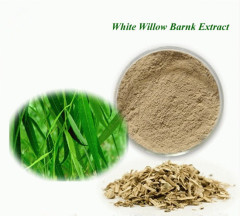 Factory price White Willow Bark Extract CAS 138-52-3