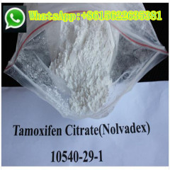 Antiestrogen Raw Steroids Tamoxifen Citrate Powder Nolvadex Hormone for Men Hair Loss