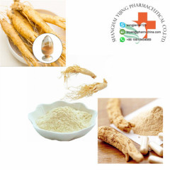 100% Natural Pharmaceutical Raw Materials Ginseng Extract 90045-38-8