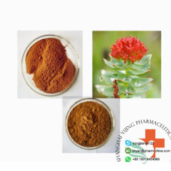 100% Natural Various Purity Raw Powder Salidroside For Anti-oxidative Skin Protection