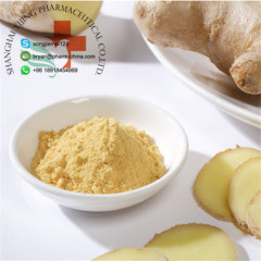 100% Natural Plant Extract Bulk Price Ginger Extract Powder For Foods and Supplement