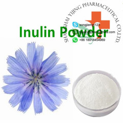 Supply Health Hot Sale Plant Extract 100% Pure Chicory Extract Inulin Powder