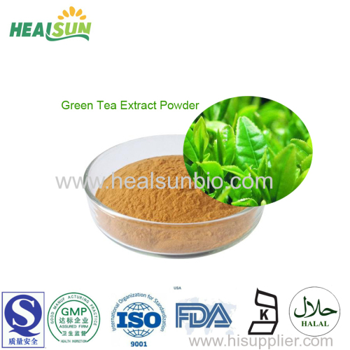 Green Tea Extract Powder Tea polyphenol 50% to 98% HPLC EGCG45%