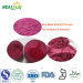 Red Beet Extract Powder for Red Colarant and sweeter