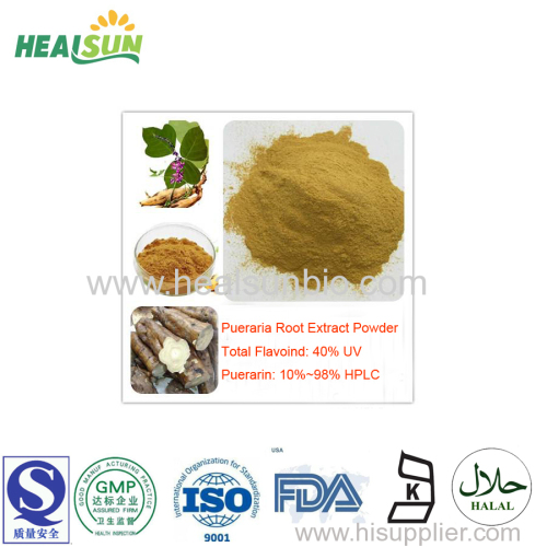Pueraria Root Extract Powder