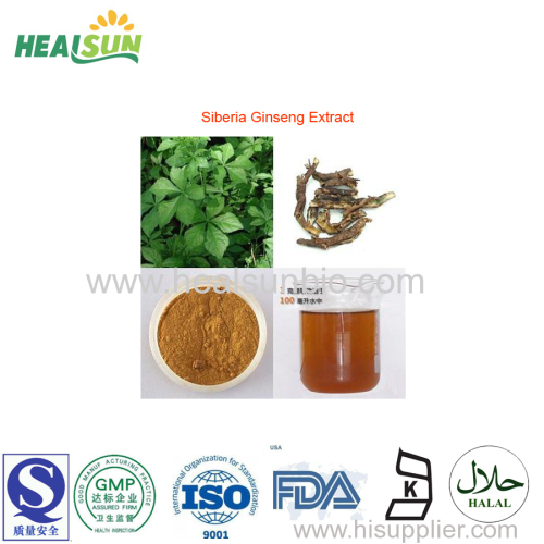 Siberia Ginseng Extract Powder Eleutheroside (B+E) 0.8%~1.5% HPLC