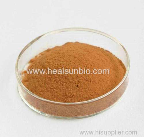 Green Tea Extract Powder  L-Theanine 20% ~60% HPLC