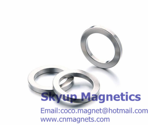 Ring Neodymium magnets used in motro magnets