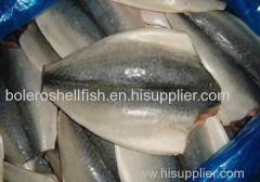 FROZEN PACIFIC MACKEREL FISH SEAFROZEN 200-300G