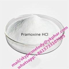 Pramoxine HCL Sell Pramoxine hcl Pramoxine hcl Pramoxine hcl Pramoxine hcl Pramoxine hcl Pramoxine hcl Pramoxine hcl low