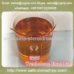 Injectable Steroid for muscle Building Trenbolone Enanthate 200 mg/ml