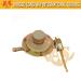Gas Regulator for Home Appliance