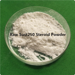 Injection Sustanon Cycle Steroid Blend Sustanon 250/Sust250 Steroid Powder