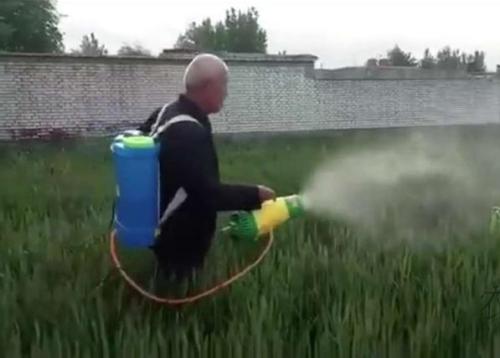 Knapsack Air Sprayer air pressure sprayer wind pressure sprayer blower sprayer blow sprayer JET SPRAYER